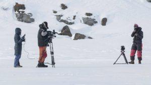 Авторское кино становится ближе: Arctic Open предоставил доступ к фестивальным фильмам онлайн